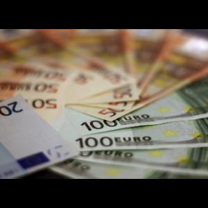 NVO pasirašė kreipimąsi dėl ekonomikos gaivinimo plano – skubėjimas kelia įtarimų