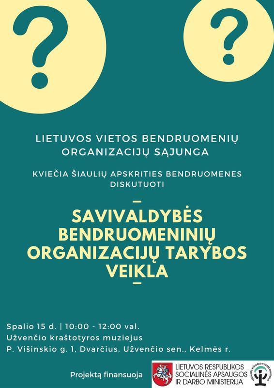 Read more about the article Susitikimas su Šiaulių apskr. bendruomenių organizacijų tarybomis